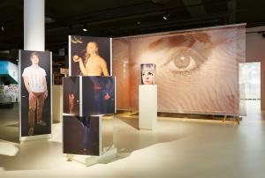 Lange Nacht der Museen Stuttgart - Bibliorama Aufmacherbild