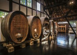 Lange Nacht der Museen Stuttgart - Weinbaumuseum Stuttgart