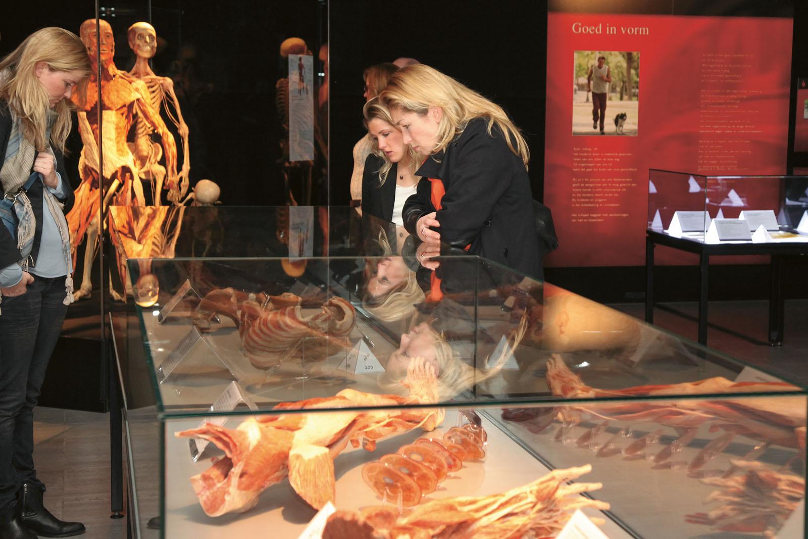 Lange Nacht der Museen Stuttgart - Koerperwelten in Schleyer Halle 2