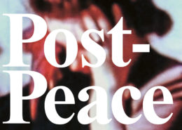 Lange Nacht der Museen Stuttgart - Wuerttembergischer Kunstverein Sonderausstellung Post Peace 1_quer